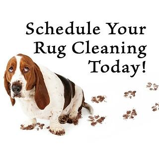 schedule_rug_cleaning.jpg